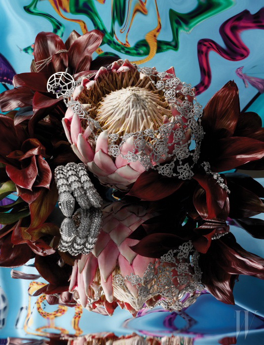 2.8캐럿의 자수정과 90개의 브릴리언트 컷 다이아몬드가 세팅되었으며 행운과 사랑을 상징하는 거미줄에서 모티프를 딴 아트랩 무아 컬렉션의 펜던트 목걸이는 Chaumet, 21.27캐럿에 달하는 3263개의 브릴리언트 컷 다이아몬드가 섬세하게 수놓인 화이트 골드 소재의 카멜리아 브로데 목걸이는 Chanel Fine Jewelry, 잎사귀와 꽃잎에서 모티프를 얻은 다이아몬드 세팅의 화이트 골드 소재 새틴 귀고리는 Cartier, 유혹적인 뱀에서 영감을 얻어 화이트 골드에 1.05캐럿의 브릴리언트 컷 다이아몬드와 49.90캐럿의 파베 다이아몬드를 정교하게 세팅한 세르펜티 팔찌는 Bulgari 제품. 배경으로 연출한 로고 스네이크 프린트의 실크 트윌 스카프는 Bulgari 제품.
