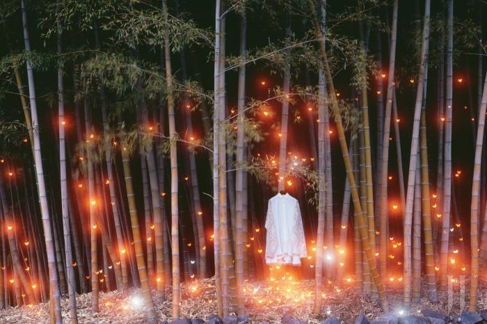 대나무 사이에 걸려 있는 레이스 장식의 셔츠 드레스는 Jinteok 제품.
