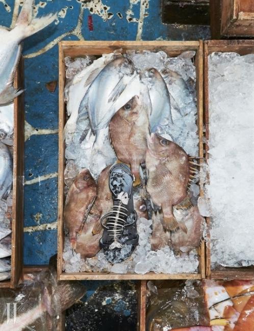 남해 삼천포어시장가시 지느러미를 가진 돔과 함께 놓인 생선뼈 모양의 플랫 샌들은 Giuseppe Zanotti 제품.