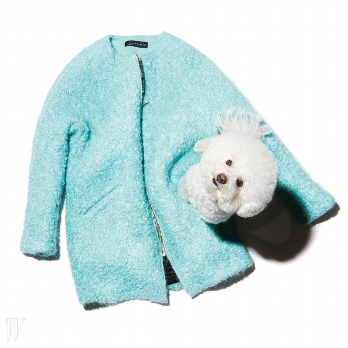 칼라가 없는 디자인이라 부피가 풍성한 목도리를매치하기 좋은 코트는 자라 제품. 24만9천원.