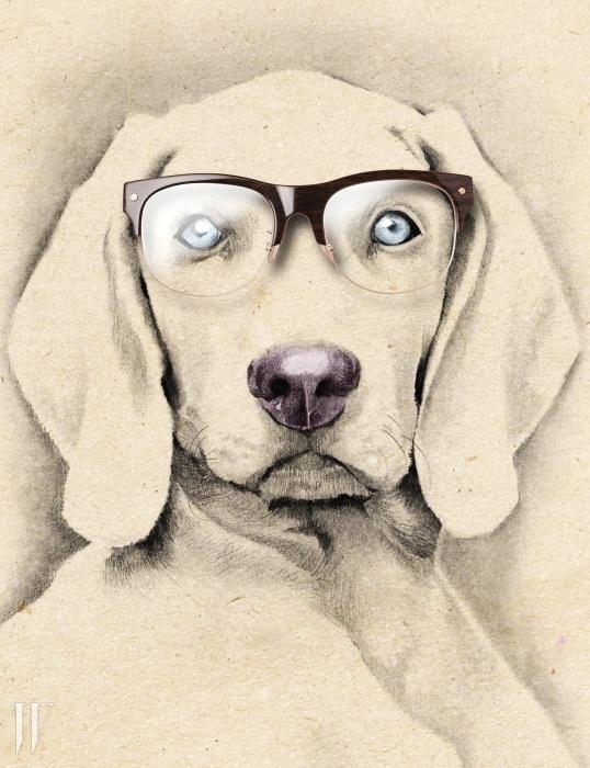 인상을 또렷하게 만드는 반뿔테 안경은톰포드 by 세원 I.T.C 제품. 50만원대.
