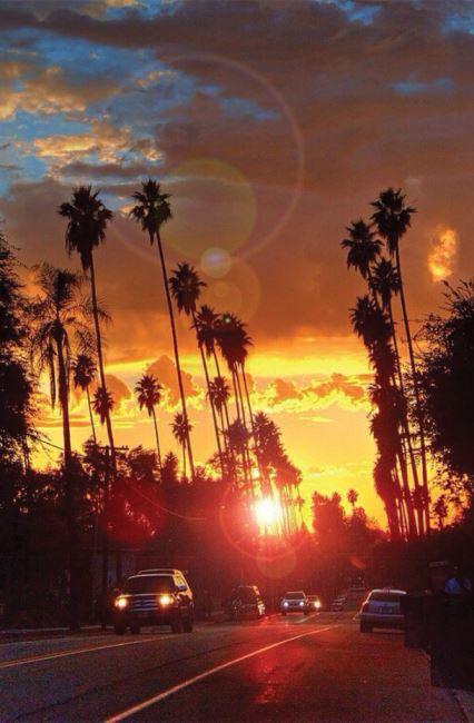 한편의그림같은 저물녘의 캘리포니아 거리.