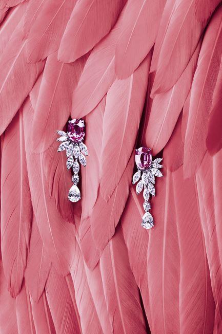 플라밍고 깃털에서 영감을 받은 핑크 사파이어와 다이아몬드가 세팅된 귀고리
