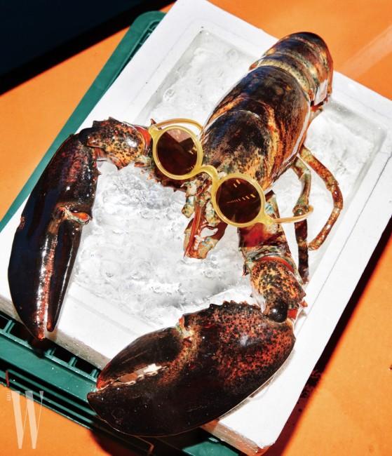 랍스터가 쓰고 있는 알이 작고 동그란 선글라스는 돌체&가바나 by 룩소티카 제품. 40만원대.