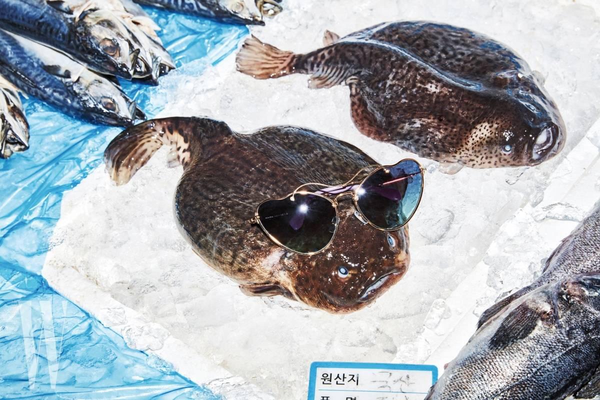 넙치 위에 놓인 캐츠아이 선글라스는 미우미우 by 룩소티카 제품. 40만원대.