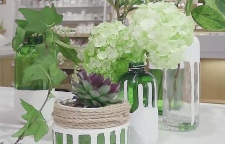 #뷰티씬스틸러 – 지구의 날 식물 인테리어 소품
