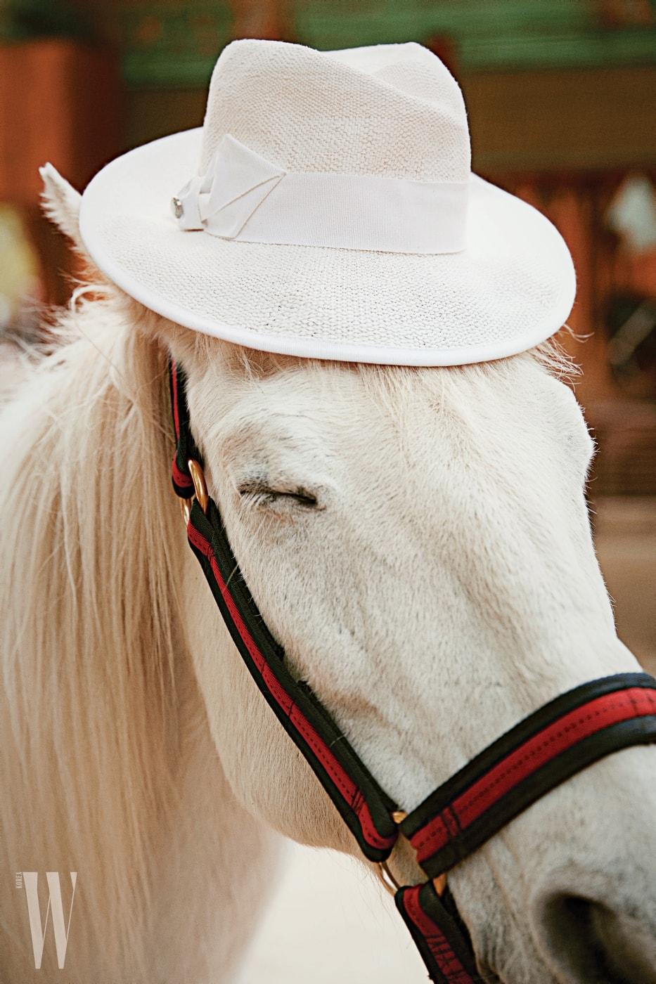 백마가 쓴 흰색 라피아 모자는 아르마니 꼴레지오니 제품. 35만원.