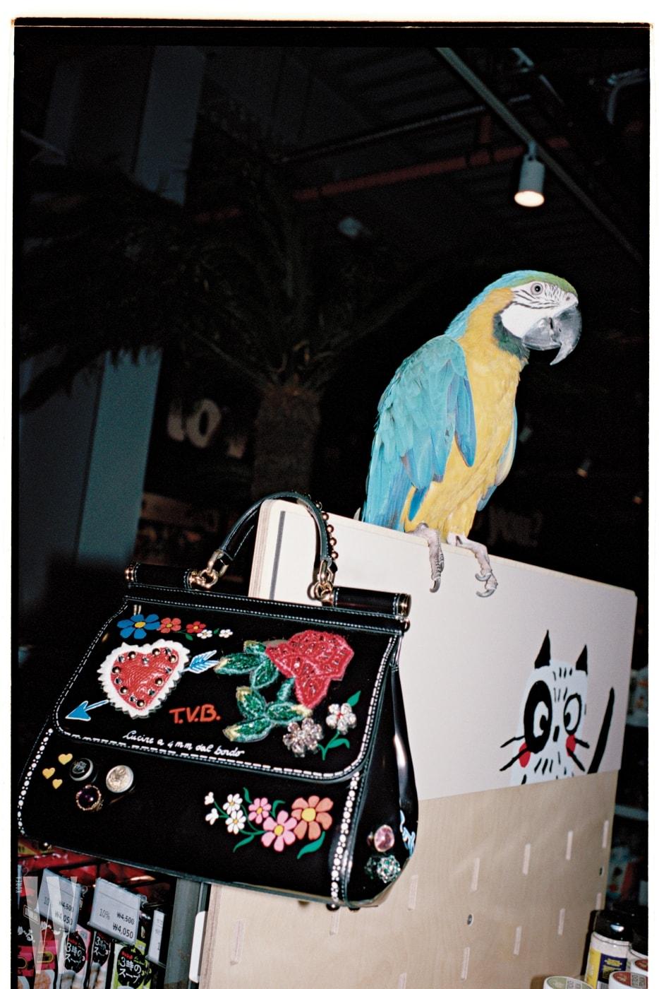 다양한 꽃무늬를 패치워크한 페이턴트 가죽 토트백은 돌체&가바나 제품. 가격 미정.