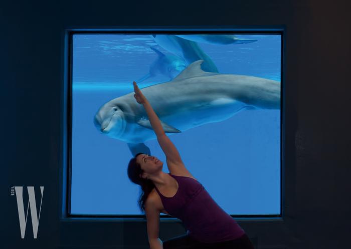 유영하는 돌고래와 함께하는 요가 프로그램. 맑은 눈빛의 돌고래는 마치 두 번째 선생님 같다.