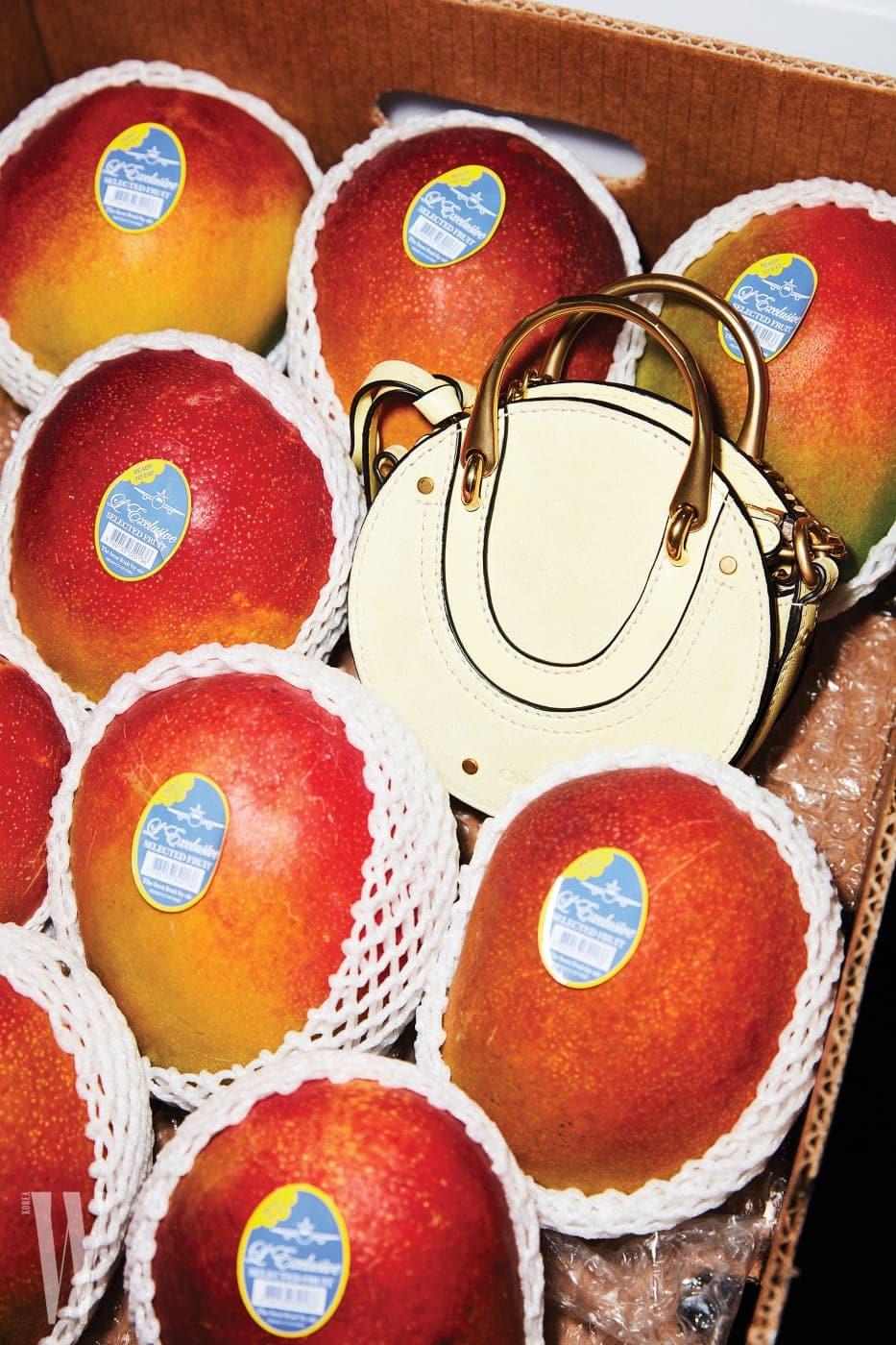 애플망고와 하나처럼 보이는 파스텔 노란색 둥근 미니 백은 끌로에 제품. 1백70만원대.