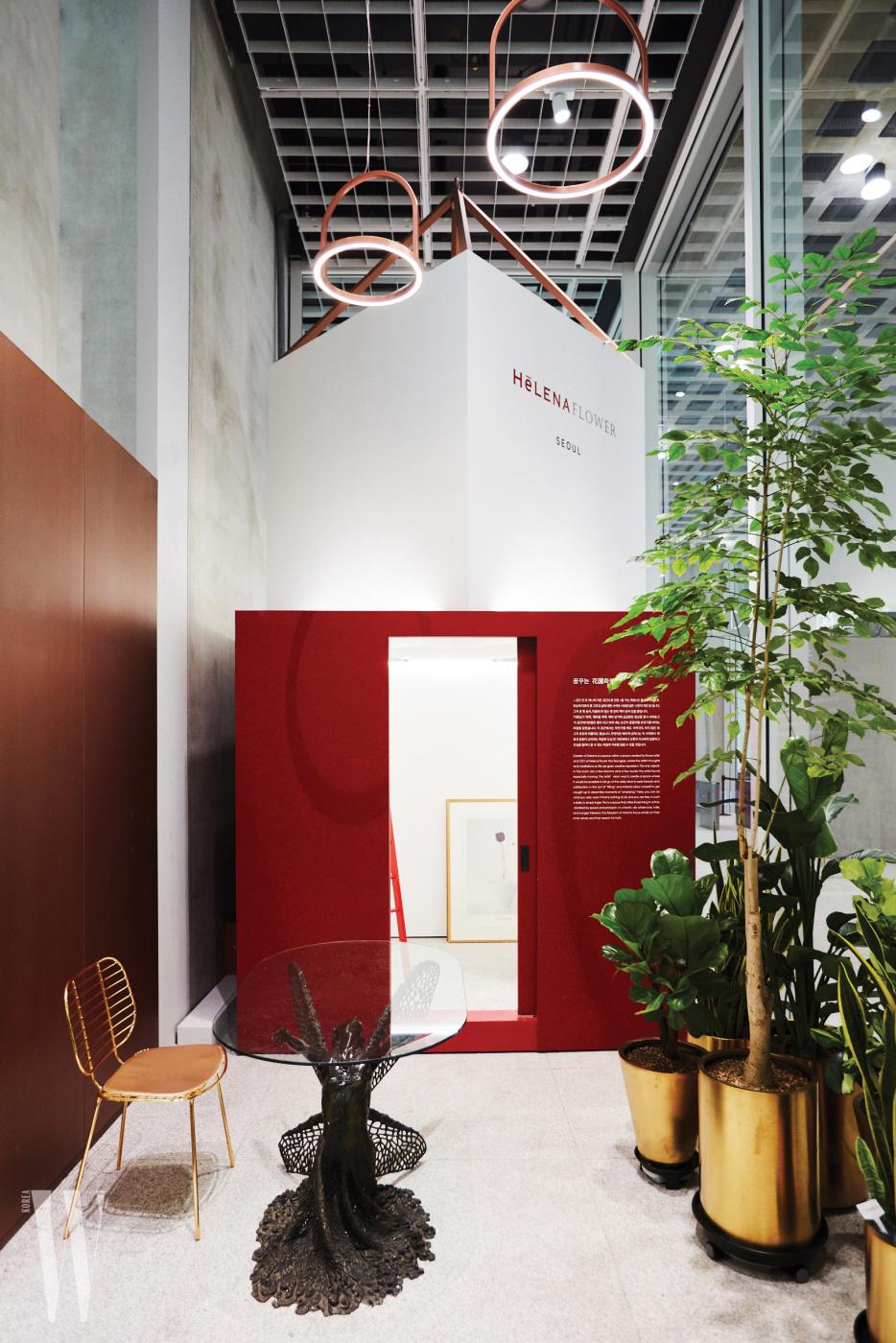 빨간 사다리를 타고 올라가서 예술, 인문학 서적을 탐독할 수 있는 레드 룸.