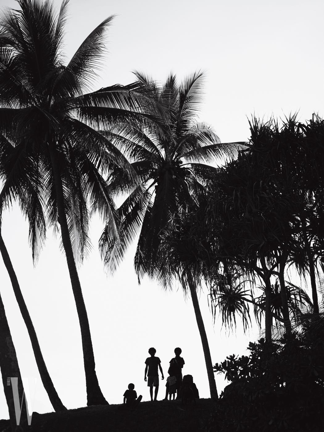 요크섬(Duke of York Island)에 줄지어 있던 야자수들. 이 아름다운 풍경의 이면에는 키 높은 나무가 태평양 전쟁 당시 교수형을 치를 때 줄을 매다는 용도로도 쓰였다는 뒷이야기가 있다