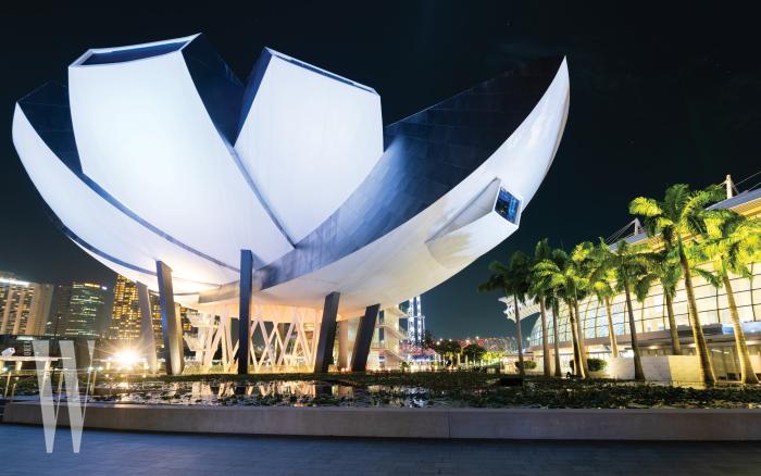 행사가 열린 싱가포르 아트 사이언스 뮤지엄.