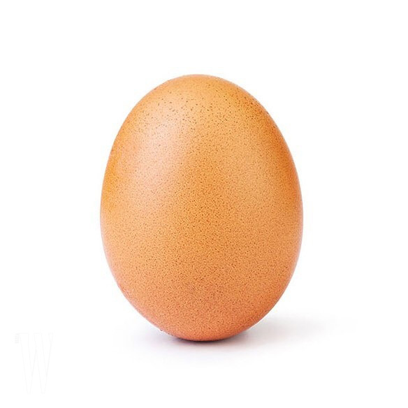 world_record_egg_47692668_1958135090974774_6762833792332802352_n
