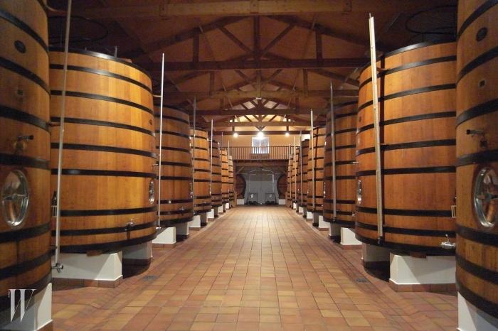 오크통으로 옮겨 담아 숙성하기 전, 발효와 침용 과정을 거치는 와인. 이단계에서 온도 조절이 중요하며 와이너리마다 서로 다른 노하우를 갖고 관리한다.