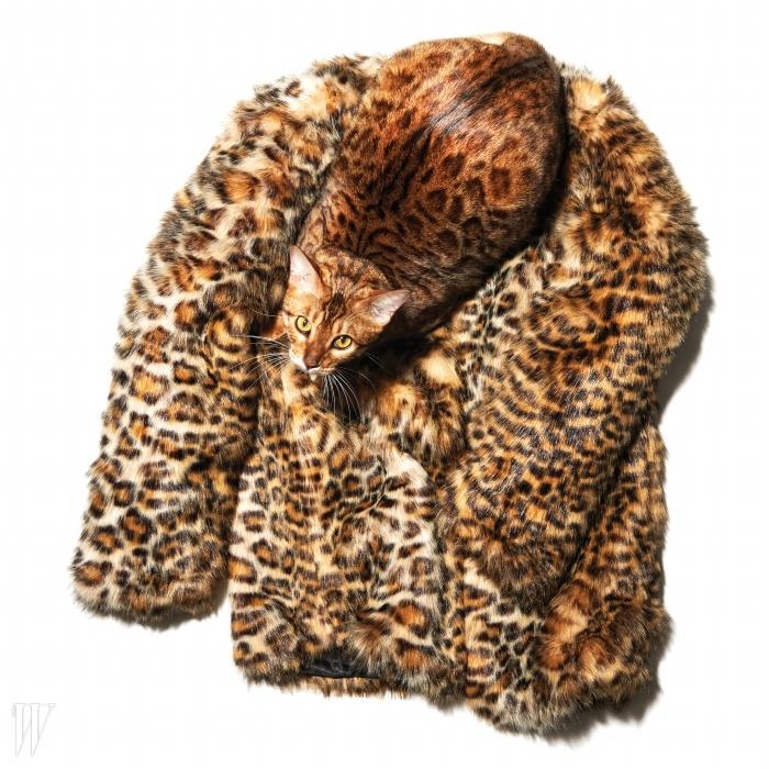짧은 길이라 캐주얼하게소화하기 더욱 좋은 코트는 버쉬카 제품. 11만9천원.