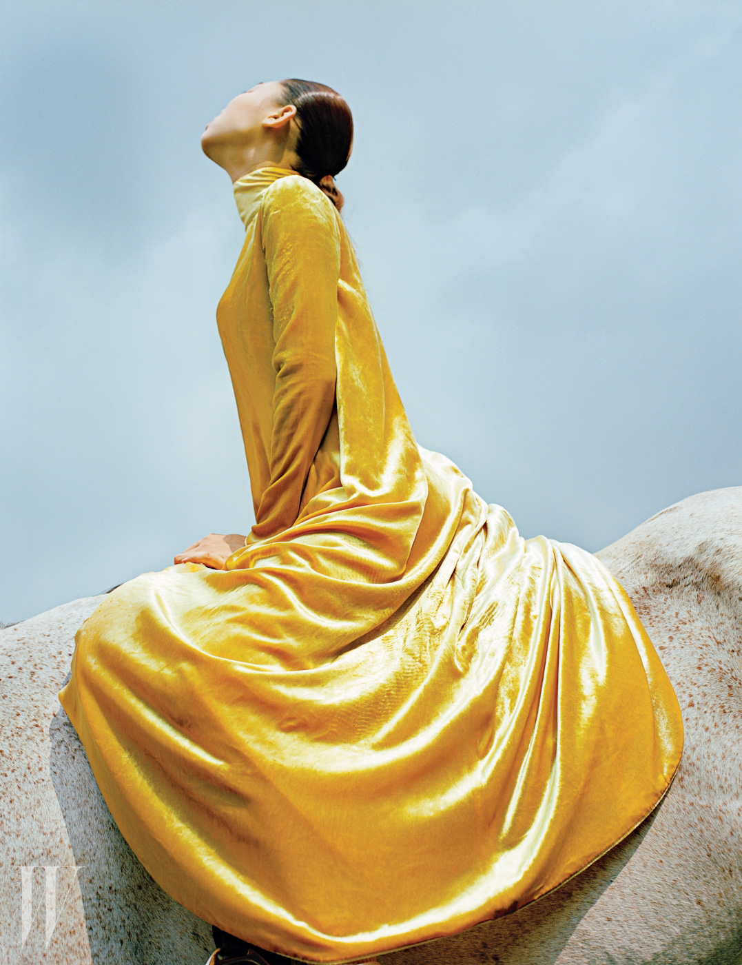 진한 노란색 벨벳 드레스는 Valentino 제품.