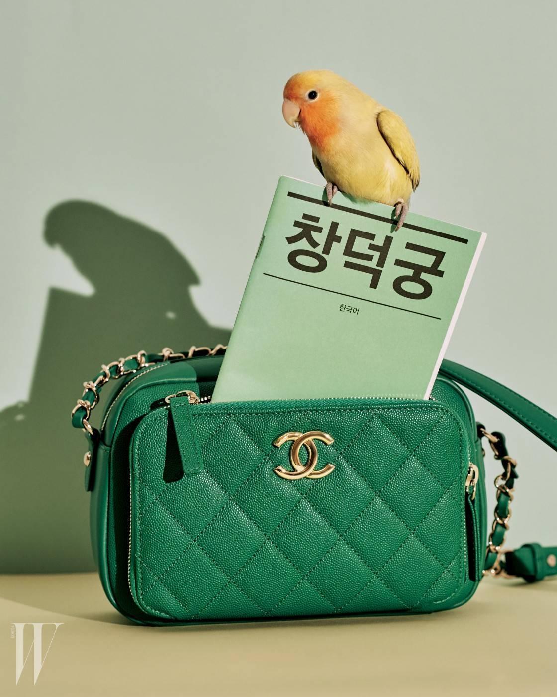 초록색 퀼팅 가죽 백은 샤넬 제품. 가격 미정.