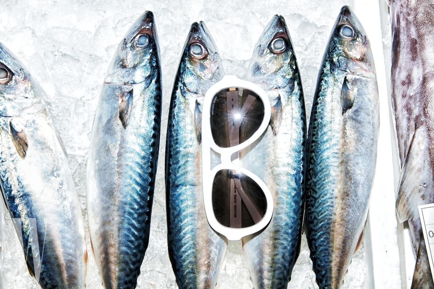 고등어 위에 놓인 과감한 크기의 하얀색 보잉 선글라스는 마이클 마이클 코어스 제품. 가격 미정.