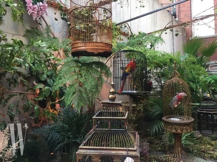 MoMA PS1에 은밀하게 차려진 구찌의 우아한 정원.