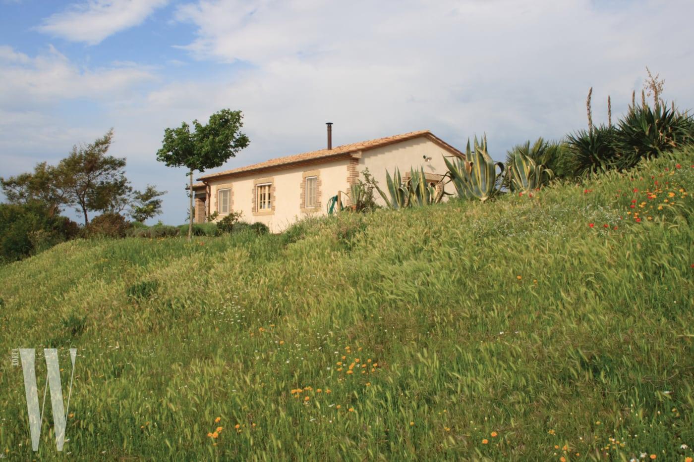 온갖 약용 허브와 식물에 둘러싸인 농장 숙소의 전경.