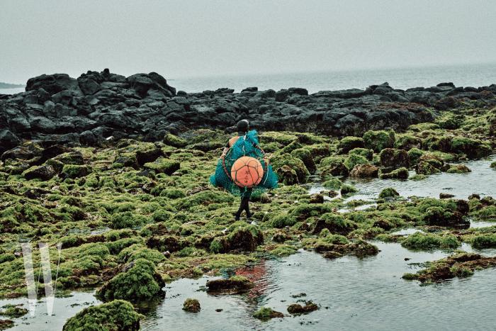 썰물로인해드러난바위위의초록빛해초. 해녀들은 이 미끄러운 해초 바위 위를 건너일터로향한다
