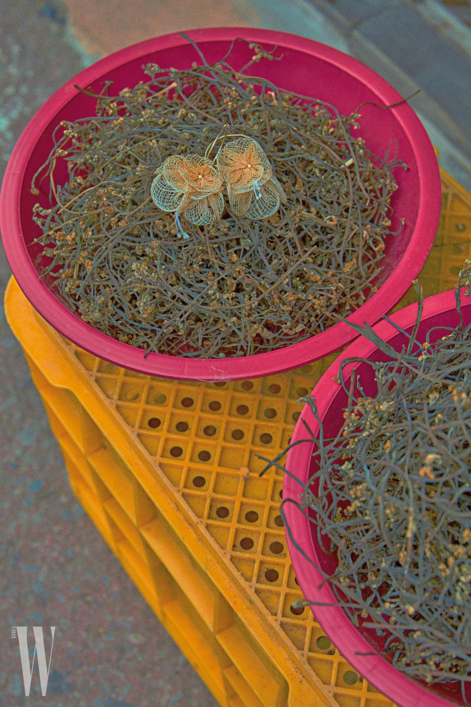 망사를 꽃잎 모양으로 만든 귀고리는 베베 제품. 5만9천원.